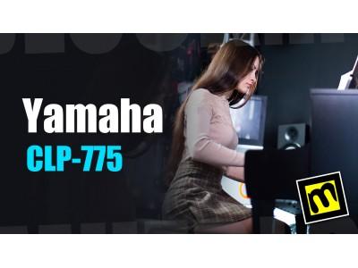 Yamaha CLP-775 - обзор цифрового фортепиано от магазина Музблок