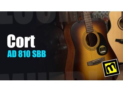 Cort AD810 SSB - обзор акустической гитары дредноут