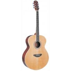 Caraya F666 Акустическая гитара, джамбо