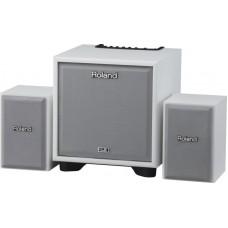 ROLAND CUBE-MONITOR-110-WH (CM-110) - инструментальный усилитель