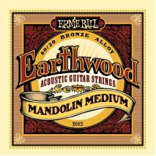 Ernie Ball 2065 струны для мандолины Earthwood 80/20 Bronze Medium Light (10-14-24w-36)
