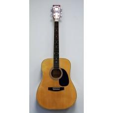 HOMAGE LF-4111 N Акустическая гитара