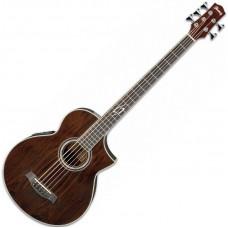 IBANEZ EWB205WNE-NT пятиструнная полуакустическая бас-гитара