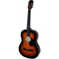 PALMER PS-39 Гитара 39