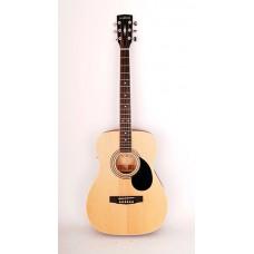 Parkwood PF51E-OP Электроакустическая гитара