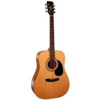 Parkwood W81 OP Акустическая гитара с чехлом
