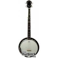 TERRIS BJ30 - банджо