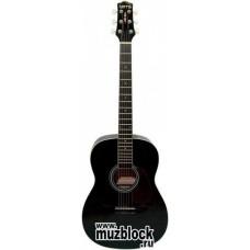 TERRIS CAG110 BK - гитара фолк