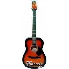 TERRIS CAG110 BS - гитара фолк