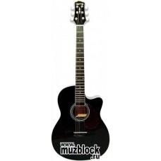 TERRIS CAG110C BK - гитара фолк