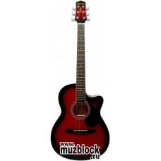 TERRIS CAG110C RDS - гитара фолк
