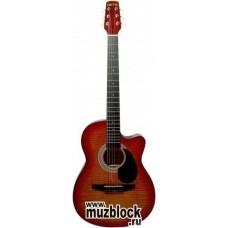 TERRIS CAG130 FC - гитара фолк