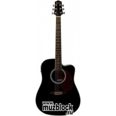 TERRIS DG220CE BK - электроакустическая гитара