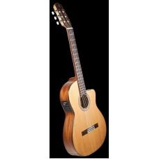 PRUDENCIO SAEZ 52 - классическая гитара, электроакустическая с вырезом