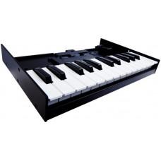 ROLAND K-25M - миди клавиатура