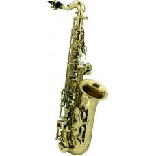 ROY BENSON AS-201 - саксофон альт