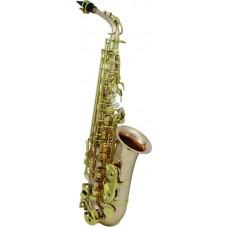 ROY BENSON AS-202G Eb - саксофон альт