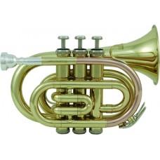 ROY BENSON PT-101 Bb - труба си бемоль, карманная