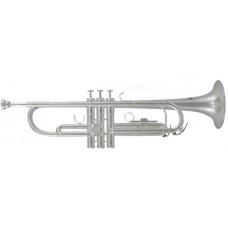 ROY BENSON TR-202S Bb - труба си бемоль