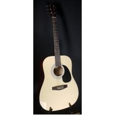 Suzuki SDG-6 NL акустическая гитара, чехол