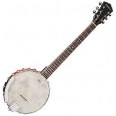 WASHBURN B6 - банджо, 6-струнное