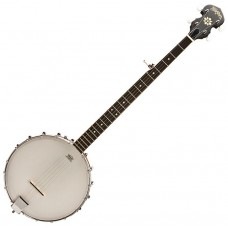 WASHBURN B7 - банджо, 5-ти струнное